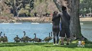 Oakland Lake Merritt Neighbors Concerned About July 4 Crowds