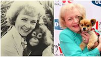 Betty White announces release of her animal talk show in honor of 99th birthday