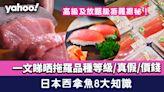 吞拿魚拖羅│日本吞拿魚8大知識!拖羅品種等級/真假/價錢 高級及放題級拖羅揭秘!