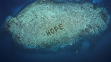 SHEBA® 推出世界上最大的珊瑚修復計劃 -「希望礁」