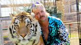 'Joe Exotic' series to star Kate McKinnon, John Cameron Mitchell