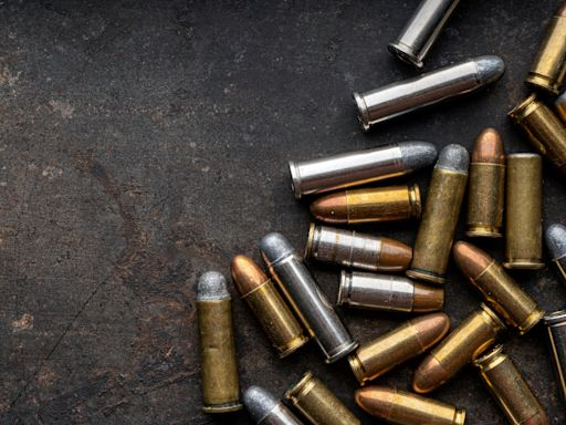 Bag full of ammunition found in central Paris; Arc de Triomphe area evacuated