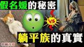 強烈反差:上海假名媛的秘密 VS 躺平族的真實!(視頻) - - 新聞 上海 - 看中國新聞網 - 海外華人 歷史秘聞 社會百態