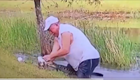Watch a 74-year-old man pry his puppy from an alligator's jaws without dropping cigar