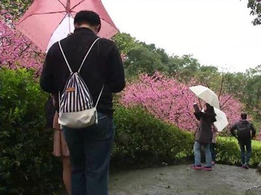 今年春天會少雨?民俗諺語原來內藏神機!