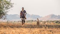 'The Boy Who Harnessed the Wind' - Oscars: A Guide to All 91 Foreign-Language Submissions
