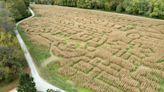 Corn-maze craze pays off for St. Louis-area farmers