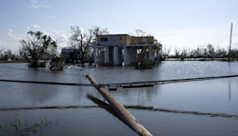 South Louisiana Still Needs Us: Learn About the Bayou Fund and How You Can Help