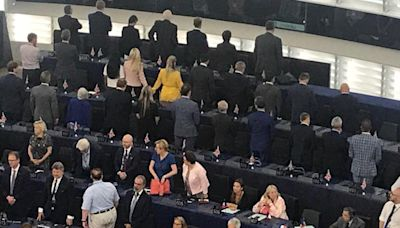 Brexit Party MEPs turn their backs on European national anthem Ode to Joy at EU parliament opening ceremony
