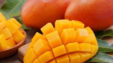 健康網》夏日吃芒果好消暑! 營養師曝熱量最低是這品種 - 即時新聞 - 自由健康網