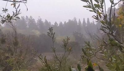 West Coast Storm System Brings Heavy Rains to California's Wine Country