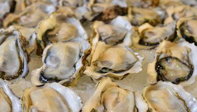 食安中心籲停售南非一款生蠔 曾涉6宗食物中毒個案