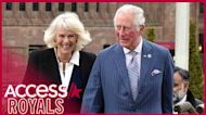 Prince Charles & Camilla Smile At First Royal Outing Since Prince Harry Accused Royal Family Of 'Total Neglect'