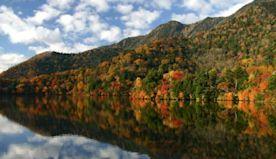 Nikko & Shikinejima: Two Adventurous Day Trips From Tokyo
