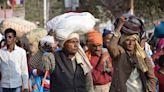 印度疫情一發不可收拾 82萬人確診