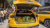 曾經香蕉=錢!全台唯一「香蕉研究所」開展 藍寶堅尼滿載台灣蕉