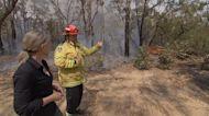 Australia Fires: Wildlife on the brink (Part 2)