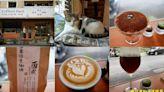 迴咖啡Coffeed Back   台中市南區咖啡廳   可愛的店貓陪伴您度過療癒的咖啡時光