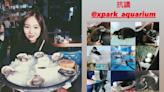 Xpark爭議|陳芳語吃素被挖生蠔照 急開直播回擊網友