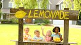 Should Investors Be Worried About Lemonade's Texas Freeze Event? | The Motley Fool
