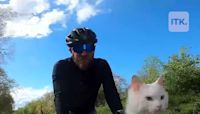 This kitty loves exploring London by bike