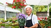 Retirement Business Ideas: 12 Ways to Get Started After 50