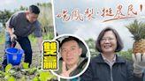 杜汶澤擬進口台灣農產品 寸大陸:居然好意思說人家的出品有問題   蘋果日報