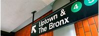 What's the Difference? Bronx vs. Brooklyn | Ray Catena Lexus