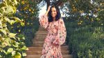 Julia Louis-Dreyfus Confesses She Misses Selina Meyer as Much as You Do