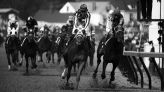 Kentucky Derby 2021: Run for the Roses records and facts