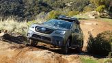 Celebrate National Cat Day by winning a Subaru Outback full of pet gear