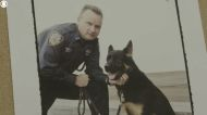Dogs of 9/11: The story of Atlas, an NYPD K-9 who searched ground zero and saved his owner's life