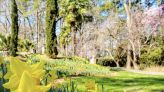 Norfolk Botanical Garden to honor African Americans who created garden more than 80 years ago