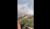 Death Toll Reaches 8 in Turkey Wildfires