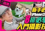 8個升級iPhone12系列新手必看拍照攝影小技巧 夜拍、杜比視界如何開啟使用