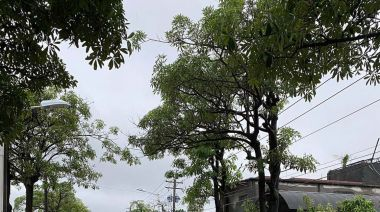 南部豪雨轟炸!高雄8區發布淹水警戒 道路積水成小河