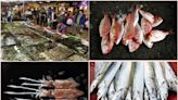 海科館生態廚房邀你來親下廚!漁夫料理吃出在地美味 | 蕃新聞