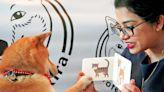 Shiba Inu Named 'Professor Akira' Learns Math Through Flashcards, Is Possibly a Doggie Genius