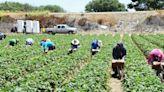 Supreme Court hands union loss in California trespass case