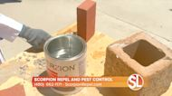 Keep scorpions OUT of your home with Scorpion Repel's Averzion