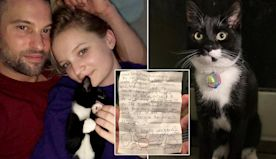 Cat raises couple's lockdown spirits by delivering letters from mystery neighbour
