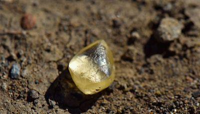 美國幸運夫婦 公園內拾「石頭」鑑定後原來是4.38卡的黃鑽