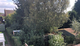 Angry couple say neighbour's overgrown garden has 'knocked £20,000 off house value'