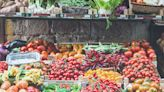 Cognitive decline: Investigating dietary factors