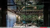 2020 德國iF設計獎 │住宅空間作品《Discretionary Green Courtyard》
