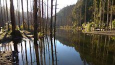 水漾森林失聯