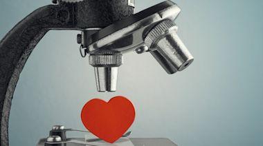 愛情與科學:基因配對能否幫你找到人生伴侶?