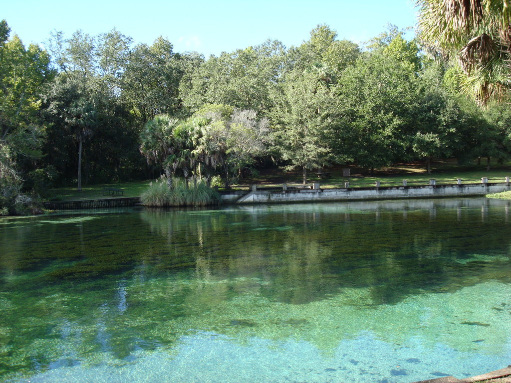 Healing salty water - Salt Springs