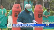 COVID Concerns At Dolphins Camp
