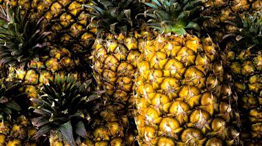 疑用大陸產菠蘿冒充台灣貨銷日? 外銷商:包裝箱照片擺烏龍
